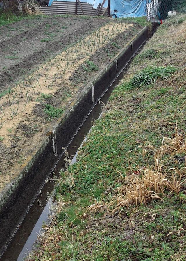 水路補修工事